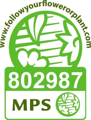 Logo MPS 802987vert.jpg