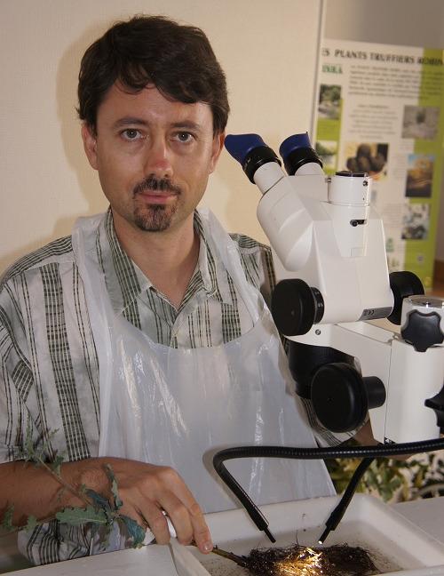 M. Claude MURAT de lINRA lors dun controle de mycorhization de PLANTS TRUFFIERS ROBIN v2