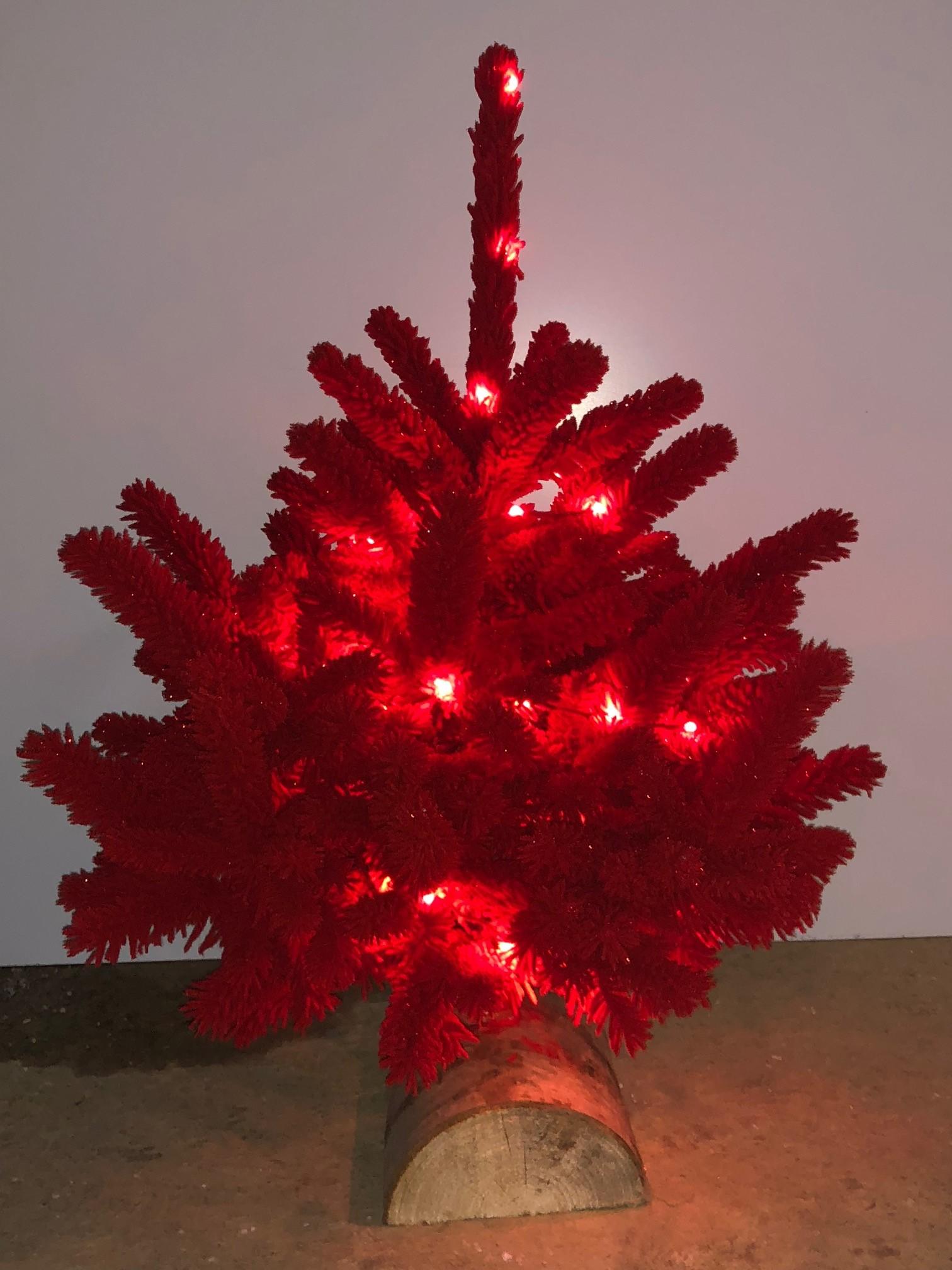 magictree rouge   40 60.jpg