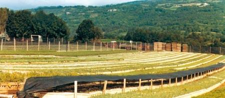 1970/1975 : 1er Godet ROBIN ANTI-CHIGNON®